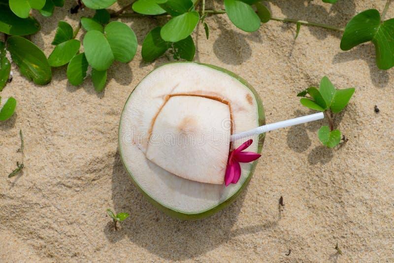 Вода кокоса на пляже стоковые изображения rf