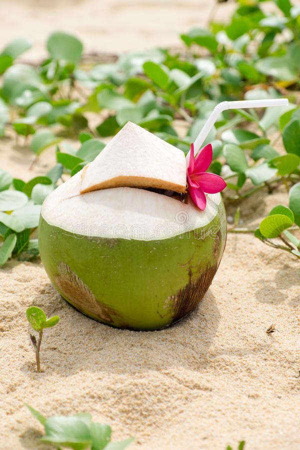 Вода кокоса на пляже стоковая фотография rf