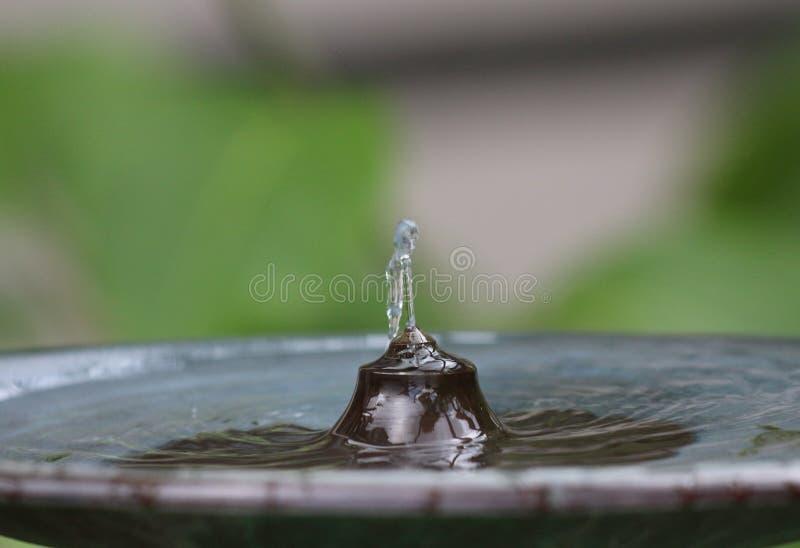 Вода fountain2 стоковые изображения rf