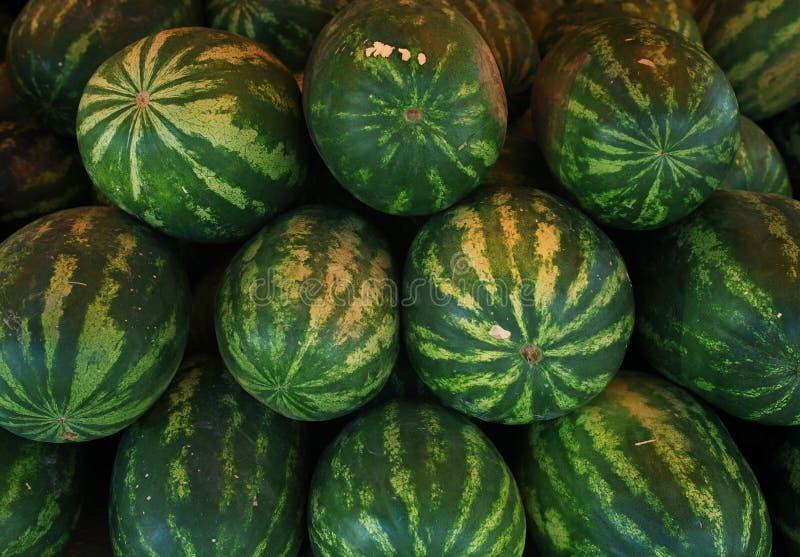 Вода-melone стоковые изображения rf