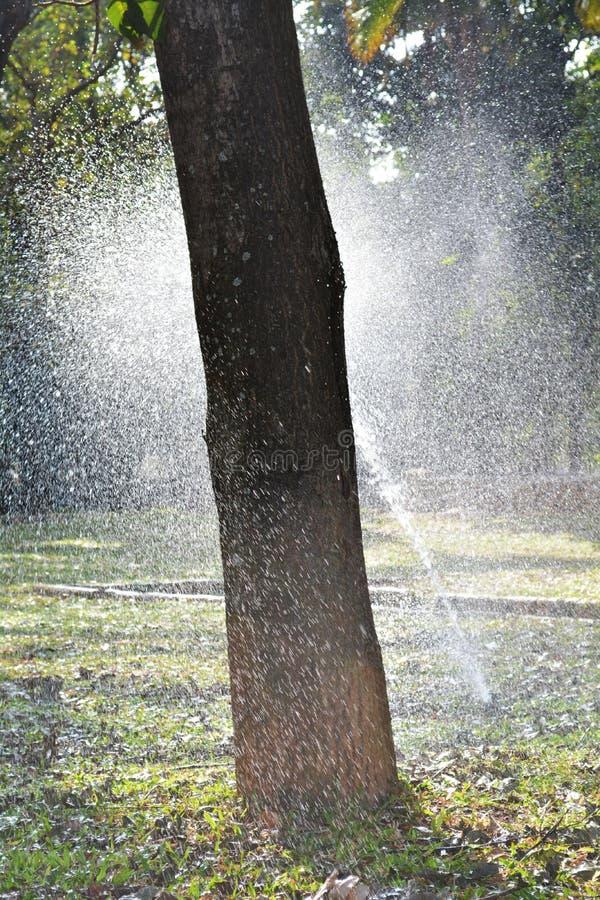 Download Вода spark1 стоковое фото. изображение насчитывающей искра - 37928398