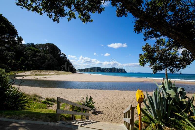 вода zealand пляжа горячая новая стоковая фотография rf