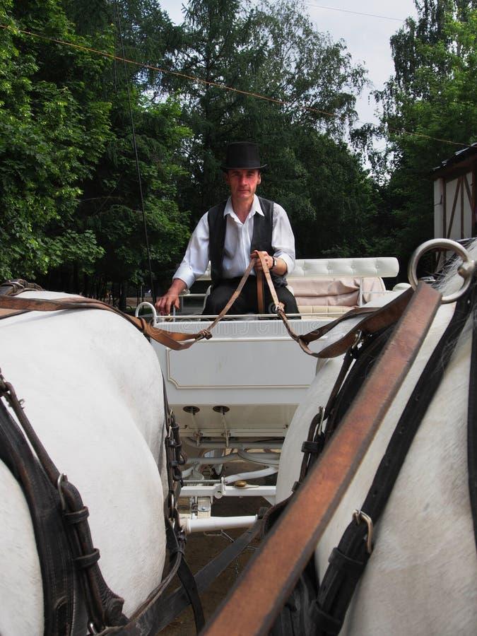 Водитель контролирует экипаж стоковые изображения