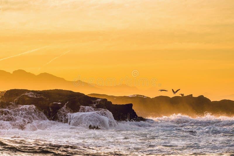 Волна ломая на утесах на заходе солнца стоковые фото