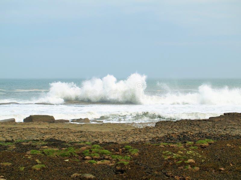 Волны брига Filey разбивая над утесами стоковая фотография