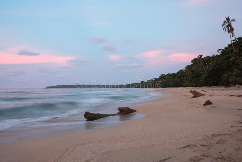 Волны на пляже Sandy Вест-Индии стоковое фото rf