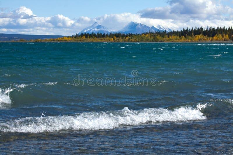 Волны ломают на береге озера Kluane стоковые изображения