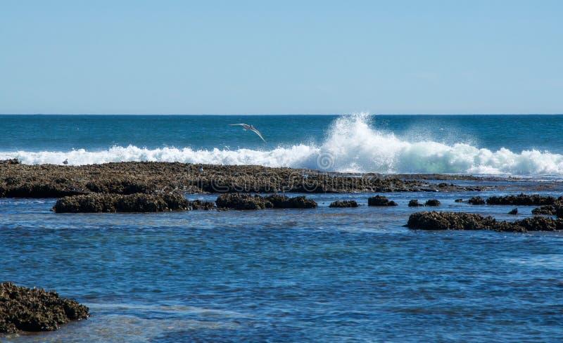 Волны разбивая на пляже свищей в металле стоковое изображение rf