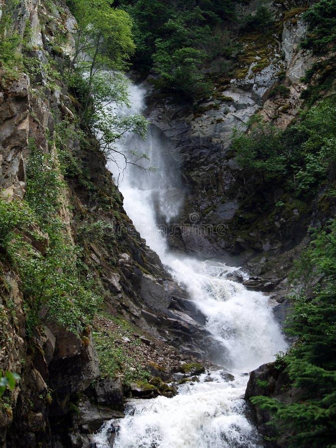 Водопад Аляски стоковые изображения