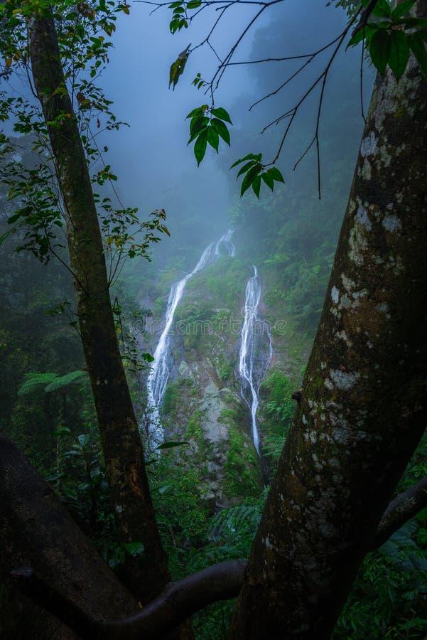 водопад быстрого взгляда подхалима стоковые изображения rf