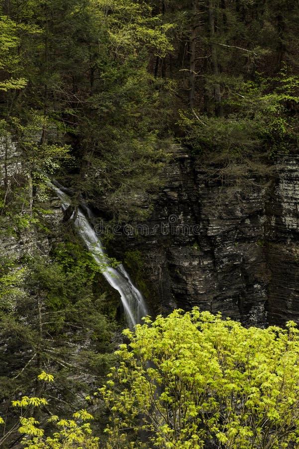 Водопад - вылижите каньон ручейка - парк Sweedler - Ithaca, Нью-Йорк стоковое изображение