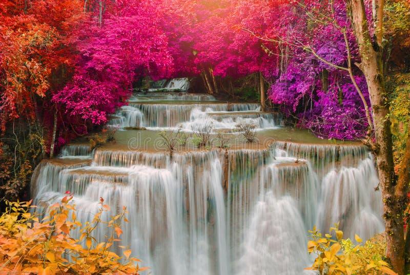 Водопад в глубоких джунглях дождевого леса (водопаде i Huay Mae Kamin стоковые фотографии rf