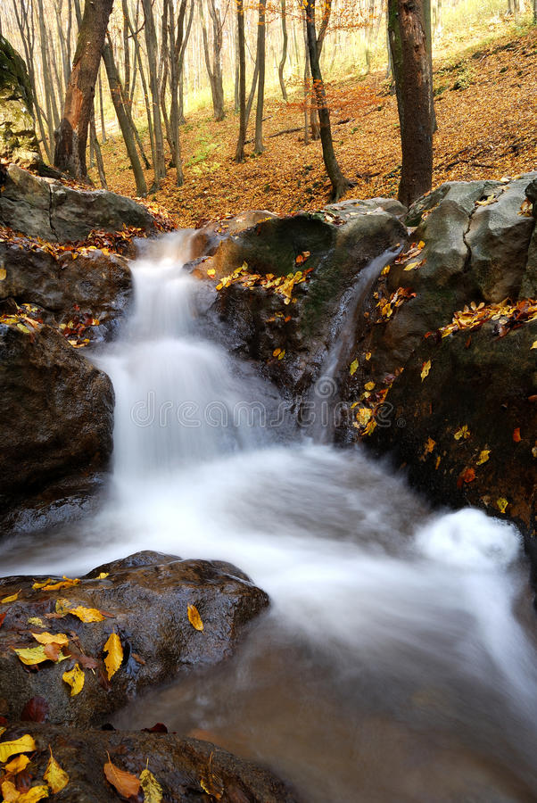 Водопад в лесе осени стоковое изображение rf