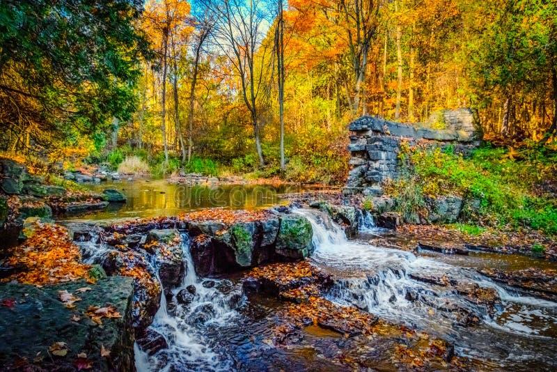 Водопад в лесе осени стоковые фото