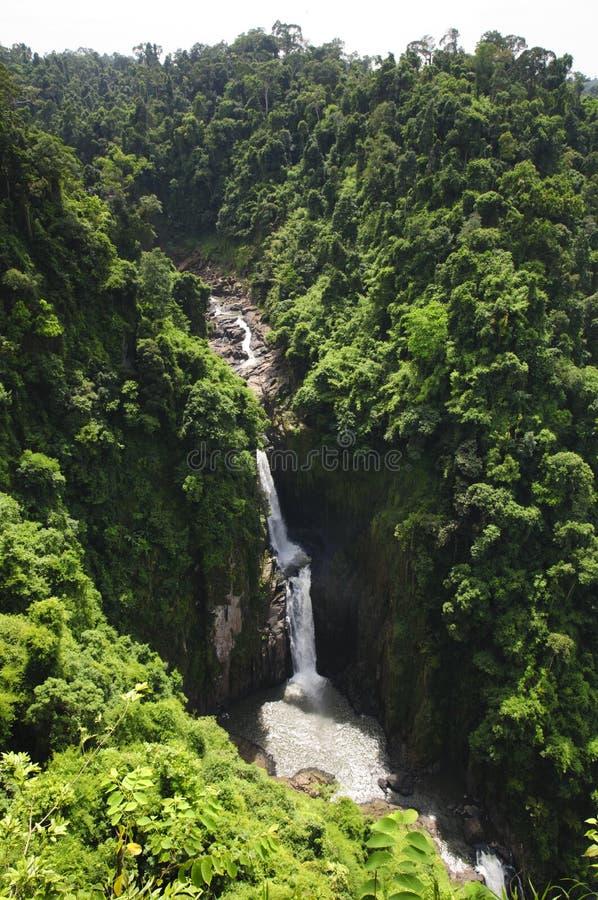 Download Водопад в джунглях стоковое фото. изображение насчитывающей очищенность - 33738794