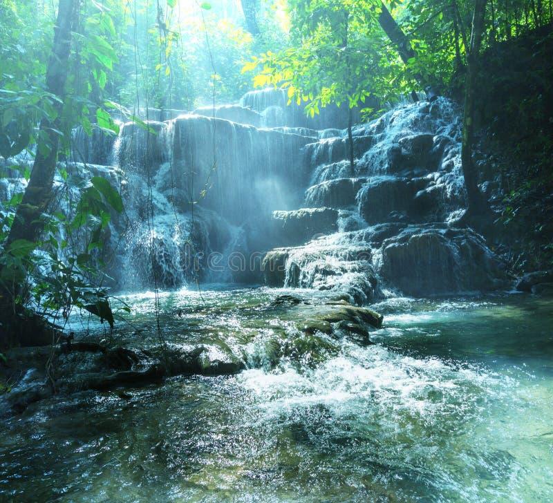 Водопад в Мексике стоковые изображения