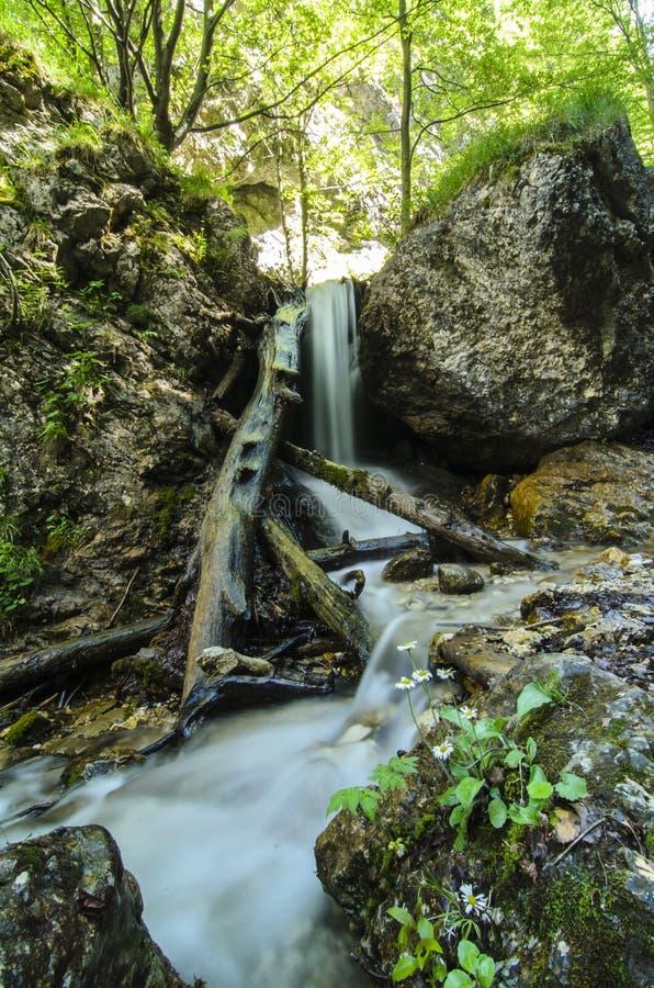 Водопад в национальном парке Mala Fatra стоковое изображение
