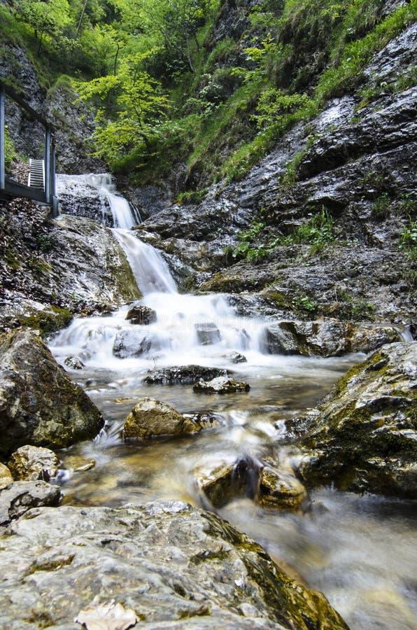 Водопад в национальном парке Mala Fatra стоковые фото