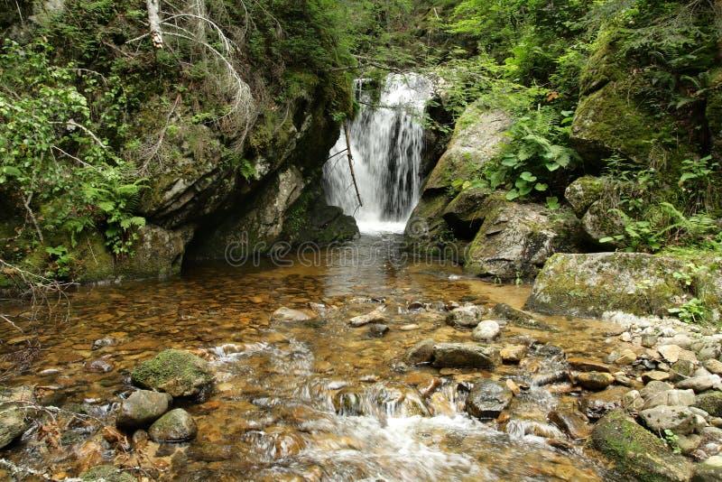 Водопад в Пиренеи, Франции стоковые изображения