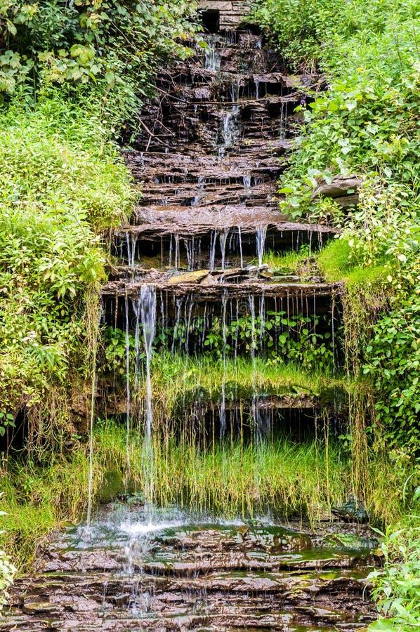 Водопад в природе стоковые изображения