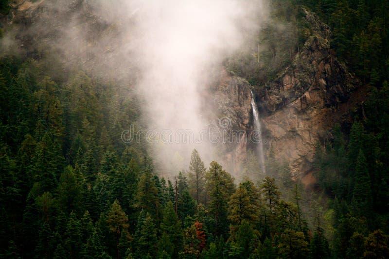 Водопад в пуще стоковая фотография rf