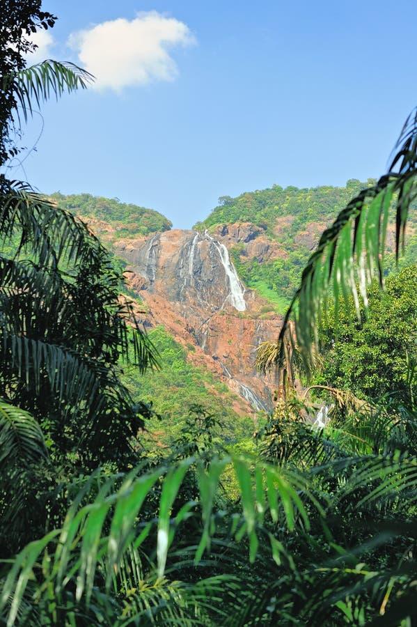 Водопад в старом Goa стоковая фотография rf