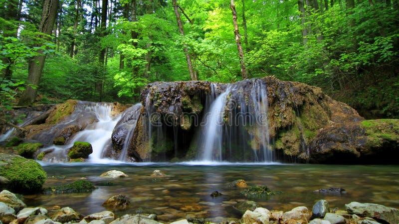 Водопад в Cheile Nerei стоковое изображение rf