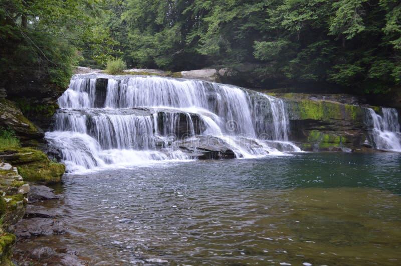 Водопад лета стоковые фото