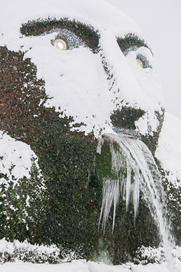 Водопад зим стоковые изображения
