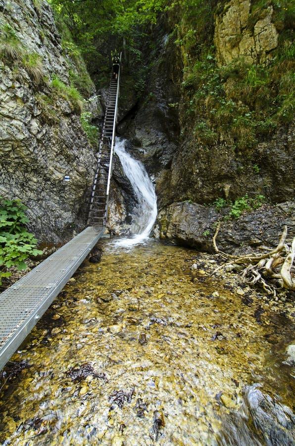 Водопад и лестница в национальном парке Mala Fatra стоковая фотография