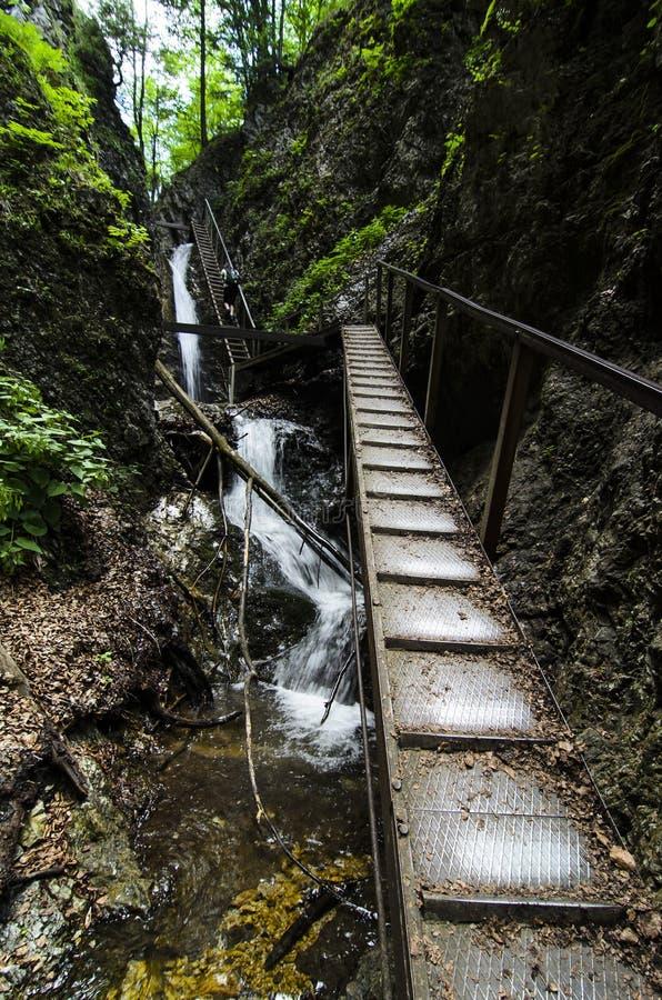 Водопад и лестница в национальном парке Mala Fatra стоковые фото