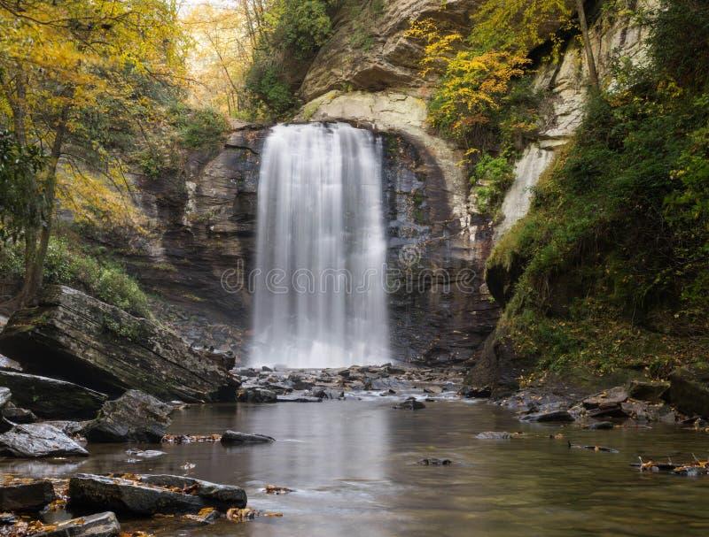 Водопад и лес осенью стоковое изображение