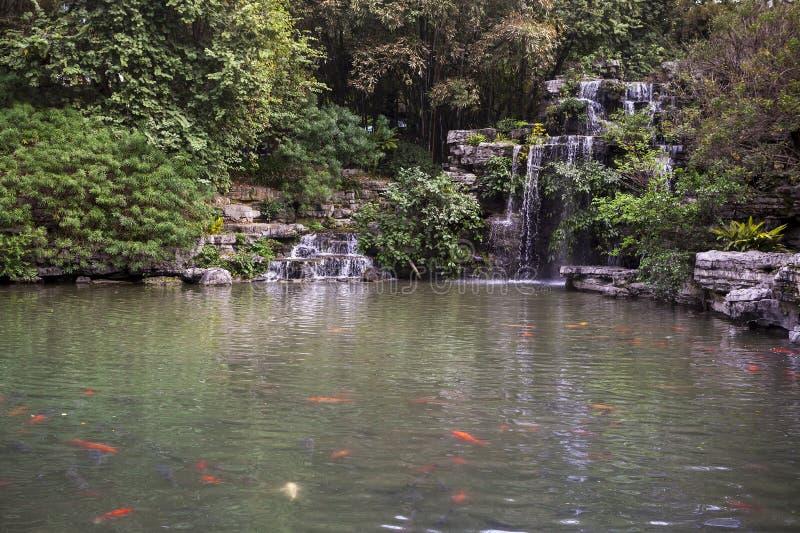 Водопад и пруд Rockery стоковая фотография rf