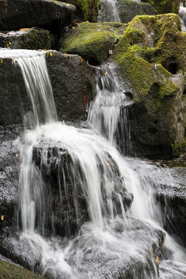 Водопад на воде Вирджинии стоковое фото