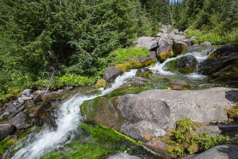 Водопад на реке рая стоковые изображения