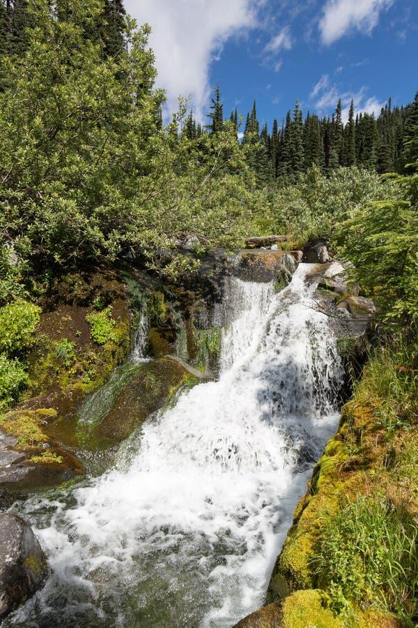 Водопад на реке рая стоковая фотография