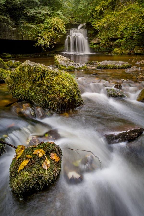 Водопад осени, западное Burton, Йоркшир, Великобритания стоковое изображение rf