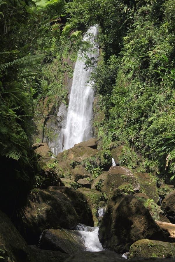 Водопад отца стоковое фото rf