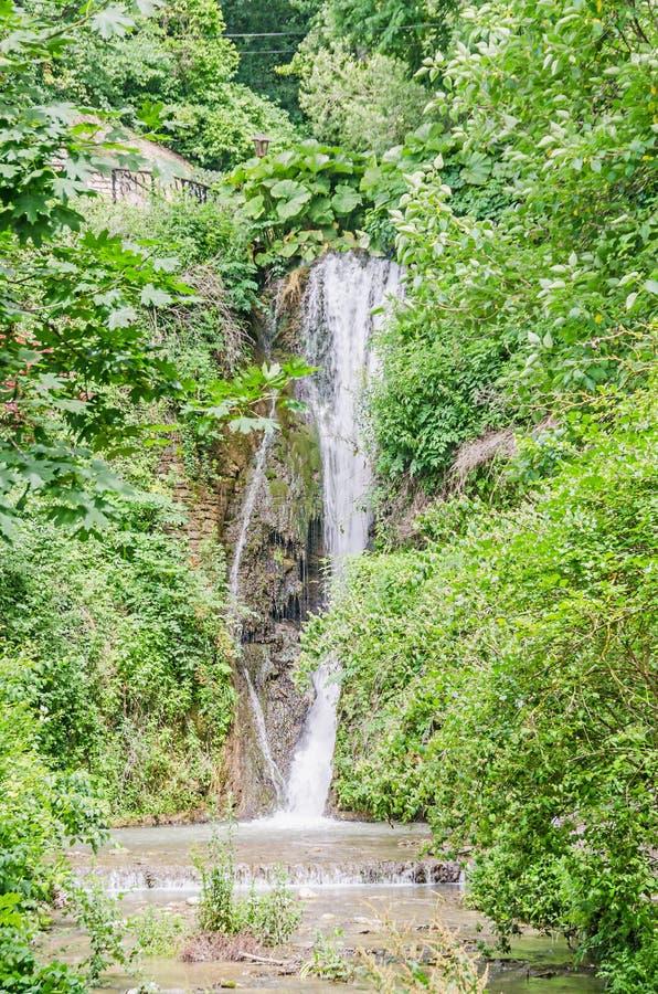 Водопад от ботанического сада Balchik, внешнего, зеленого g стоковые изображения rf