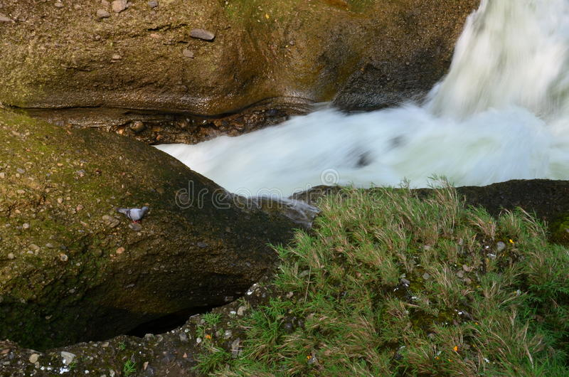 Водопад падений или дьявола ада на Pokhara в Непале стоковое фото