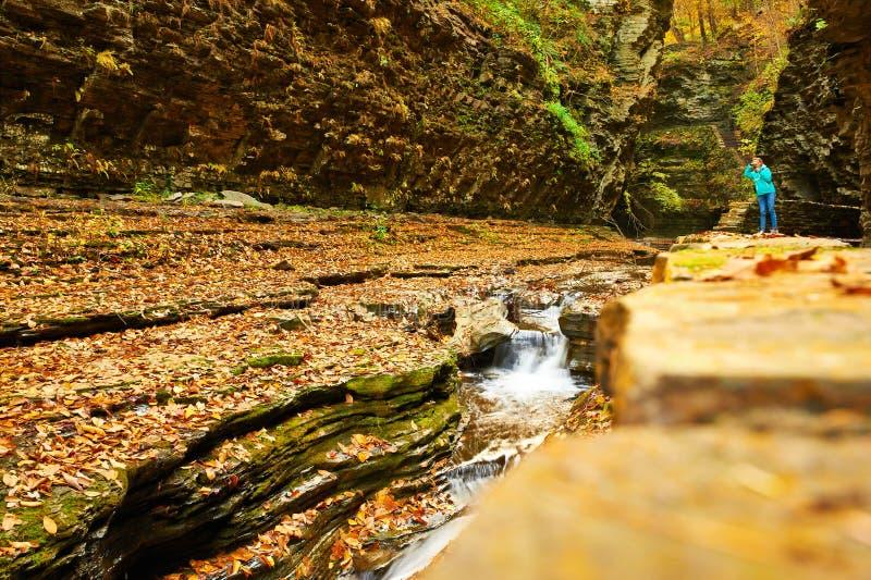 Водопад пещеры на парке штата Watkins Глена стоковые фото