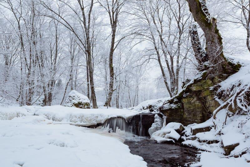 Водопад покрыл снег стоковая фотография