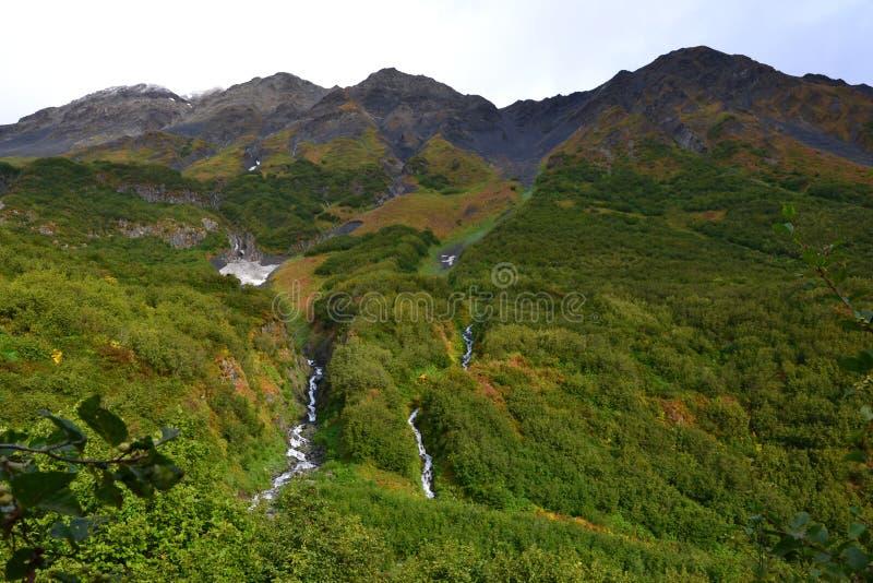 Водопад поля льда Аляски Seward Harding стоковые изображения rf