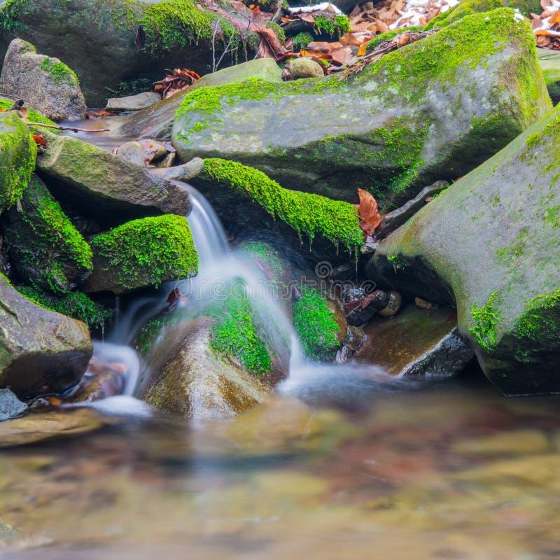Водопад ручейка леса между мшистыми утесами стоковая фотография