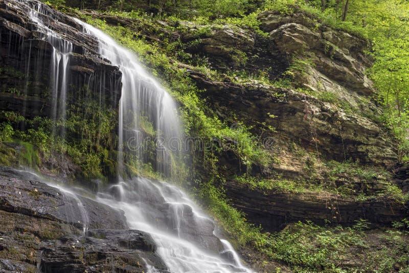 Водопад собора леса стоковое изображение rf