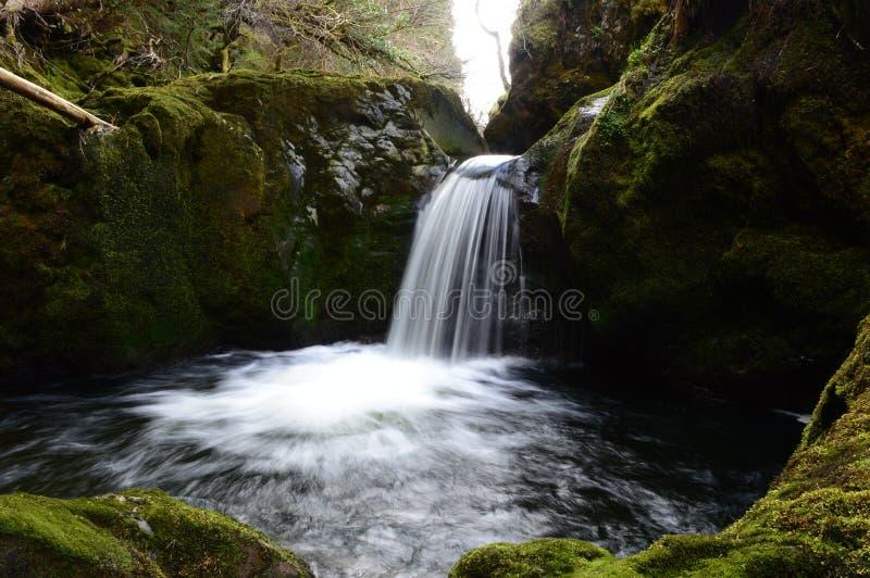 Водопад спрятанный Hafren стоковое фото