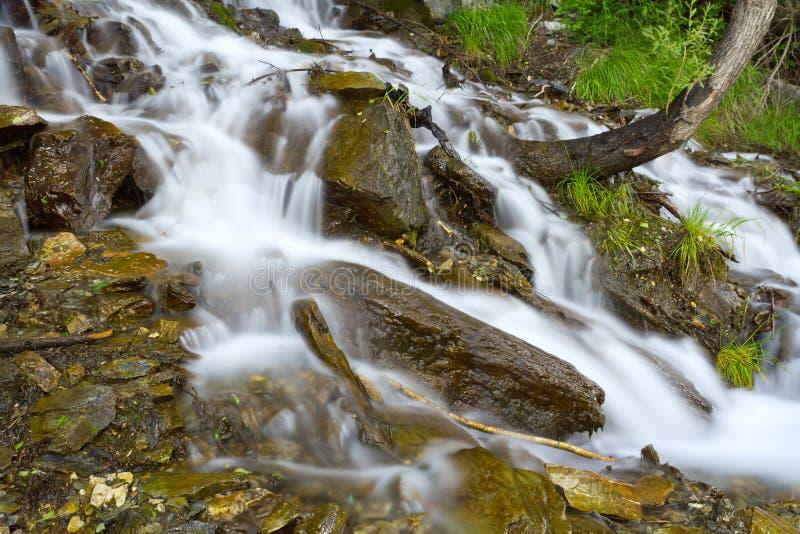 Водопад трясет лес стоковые изображения rf