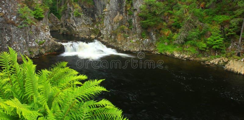 водопад Шотландии стоковая фотография