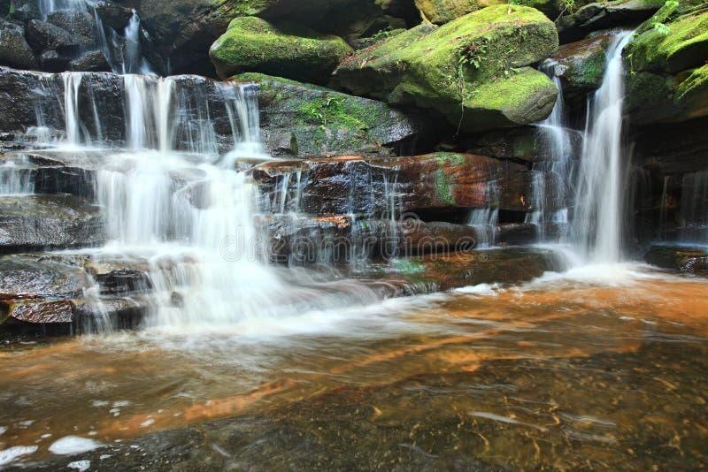 Водопады Австралия Somersby стоковые изображения rf