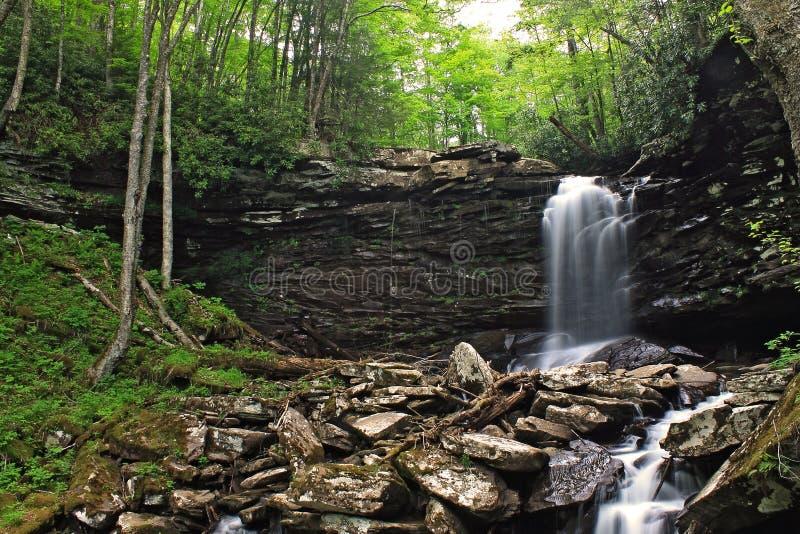 Водопады весеннего времени стоковое изображение rf